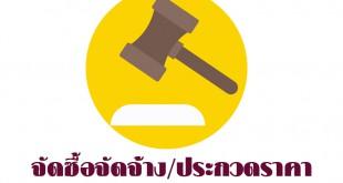 auction_logo
